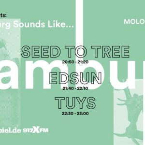 Luxembourg sounds like....! Reeperbahnfestival Revival im Molotow! Drei Bands for free!